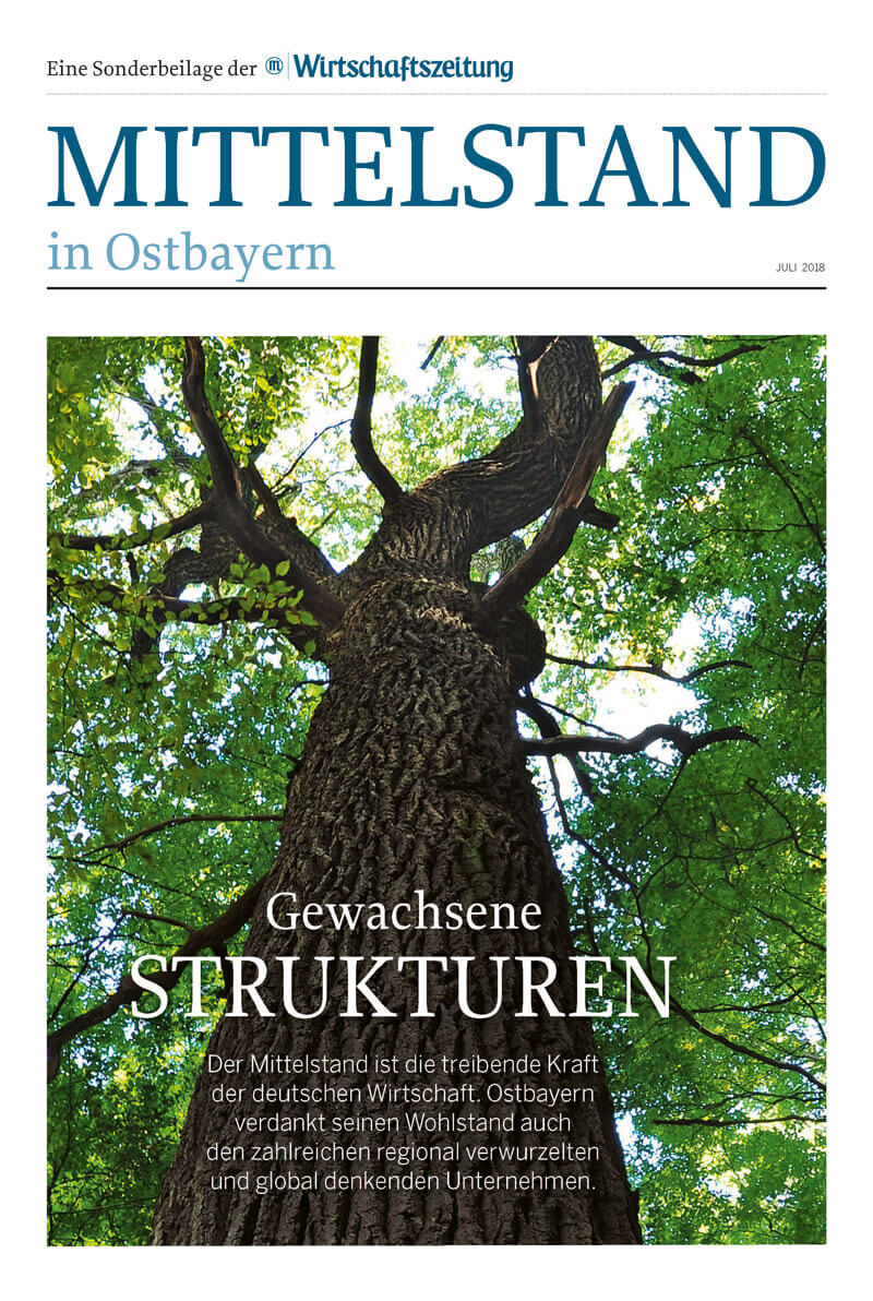 Mittelstand in Ostbayern Cover
